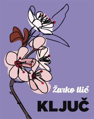 Ključ - Žarko Ilić | Rende